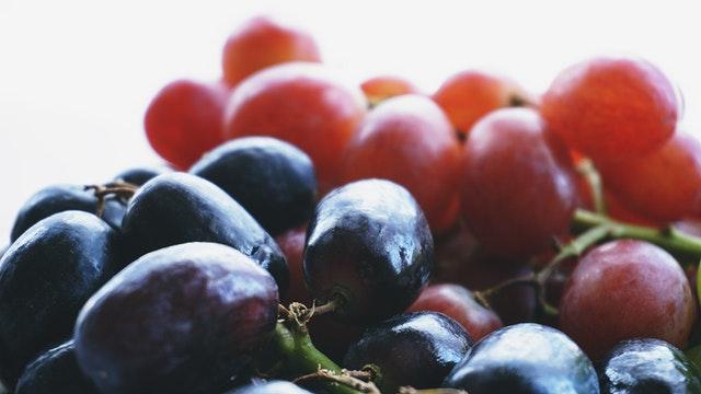 Raisins dont sont extraits les tanins